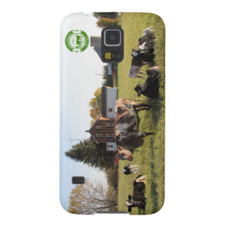 Herd of Cows Case