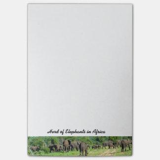 Herd of Elephants Notes