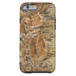 Herd of female Impala, Masai Mara, Kenya. Tough iPhone 6 Case