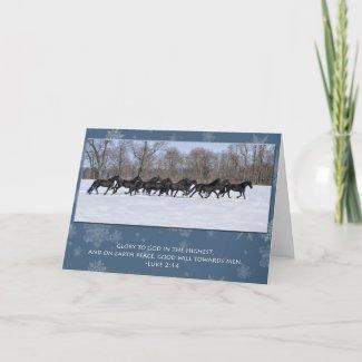 Herd of Friesian Mares Christmas Card