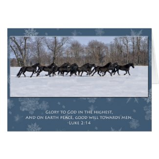 Herd of Friesian Mares Christmas Card