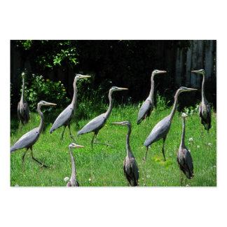Herd of Heron ~ ATC Large Business Card
