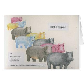 Herd of Hippos? Greeting Card