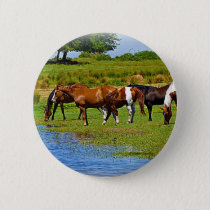 Herd of Horses Button