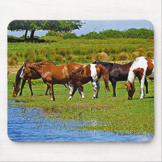 Herd of Horses Mouse Pad
