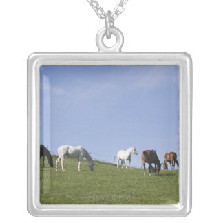herd of horses on meadow silver plated necklace