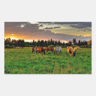 Herd of horses rectangular sticker