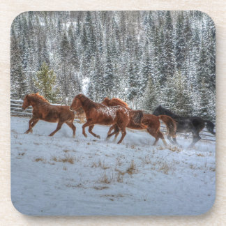 Herd of Horses Running in Winter Snow Beverage Coaster