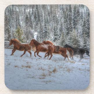 Herd of Horses Running in Winter Snow Beverage Coaster