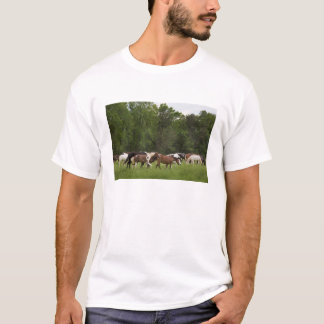 Herd of horses, Tennessee T-Shirt