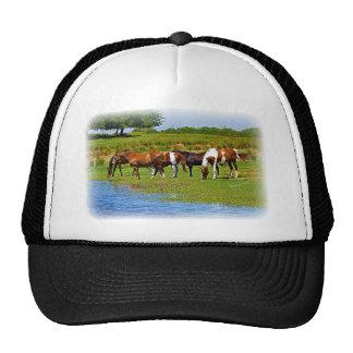 Herd of Horses Trucker Hats