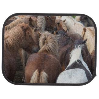 Herd of Icelandic horse Car Floor Mat