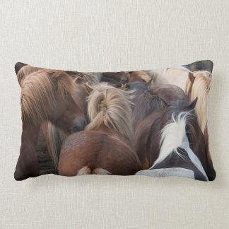 Herd of Icelandic horse Lumbar Pillow