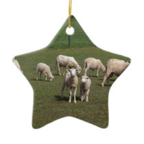 Herd of sheep ceramic ornament