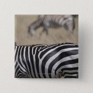 Herd of Zebras grazing, Masai Mara Game Reserve, Button
