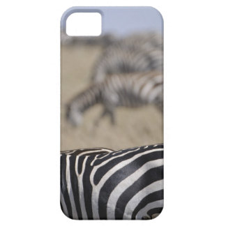 Herd of Zebras grazing, Masai Mara Game Reserve, iPhone SE/5/5s Case