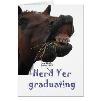 Herd Yer Graduating Funny Horse Card