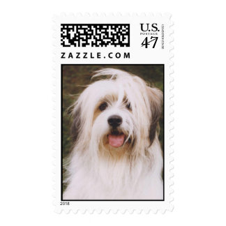 Herding Dog Postage Stamp