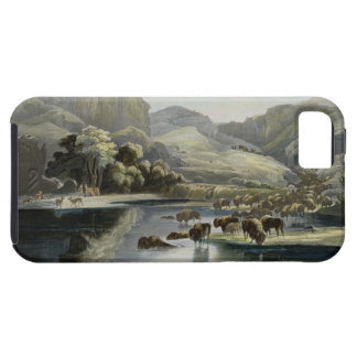Herds of Bison and Elk on the Upper Missouri, plat iPhone SE/5/5s Case