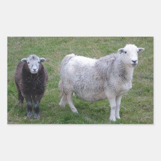 Herdwick Ewe and Lamb Sticker