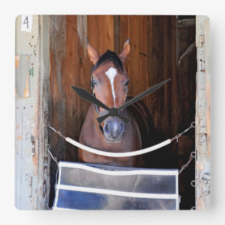 Here Comes Rosie in her Stall Square Wall Clock