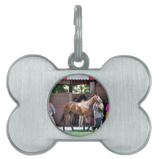 Here Comes Rosie Pet Name Tag