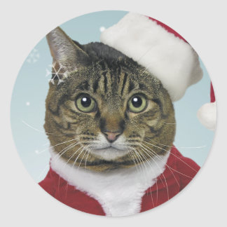 Here Comes Santa Claws Stickers
