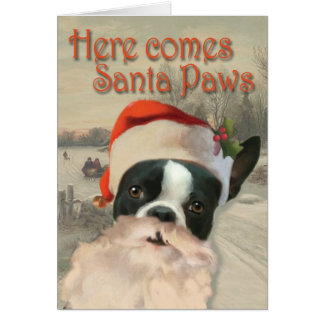 Here Comes Santa Paws Cards