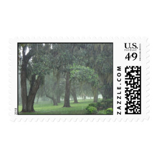 Here Comes The Rain Again Postage