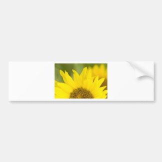Here Comes the Sun Bumper Sticker