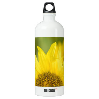 Here Comes the Sun Water Bottle