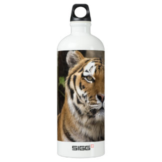 Here Endeth The Lesson SIGG Traveler 1.0L Water Bottle