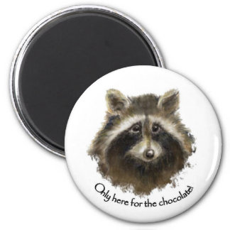 Here for the Chocolate, Cute Raccoon, Animal Magnet