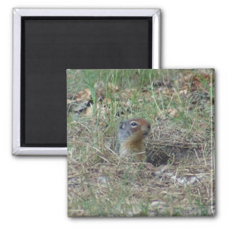 Here I am 2 Inch Square Magnet