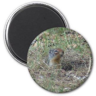 Here I am 2 Inch Round Magnet