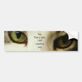 Here is looking at you car bumper sticker