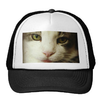 Here is looking at you trucker hat