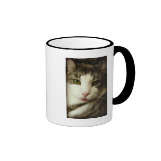 Here is looking at you mug