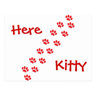 Here Kitty Cat Paws Postcard