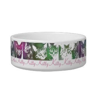 Here Kitty Kitty Kitty.... Bowl
