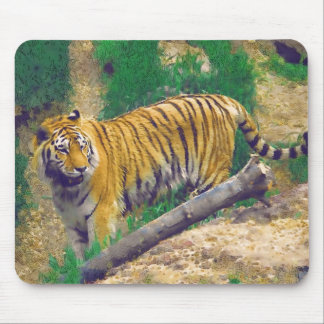 Here Kitty Kitty Mouse Pad
