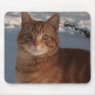 here, mousey, mousey! mouse pad