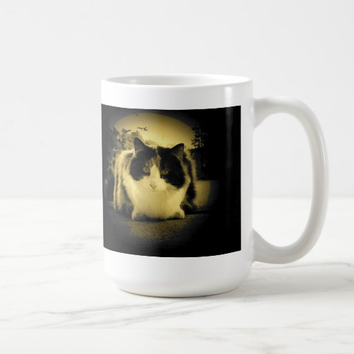 Here mousey mugs