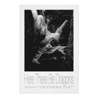 Here There Be Dragons Poster