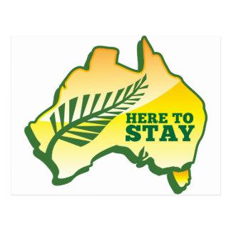 HERE TO STAY Kiwi New Zealander in Australia Postcard