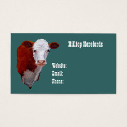 Hereford Beef: Business Card: Oil Painted Art Business Card