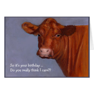 Hereford Beef Cow: Do I Care About Your Birthday? Card