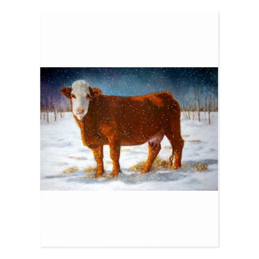 HEREFORD BEEF COW: PASTEL ART POSTCARDS