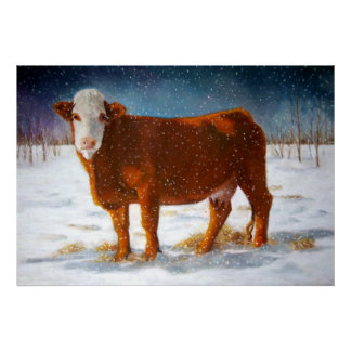 HEREFORD BEEF IN SNOW: ART: CANVAS PRINT