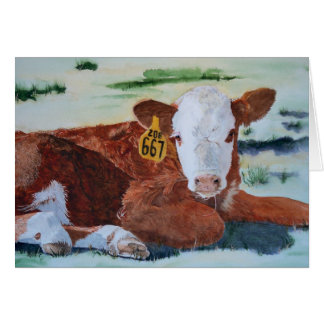 Hereford Calf Card